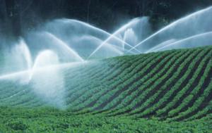 dema_lp_agriculture_main