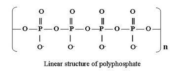 long_chain_po4